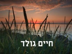 Chaim Gold – Room for the light of the Neshama