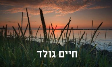 Chaim Gold – Room for the light of the Neshama