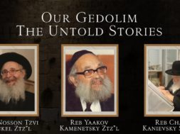 Stories About Our Gedoilim- A project by Mint Media