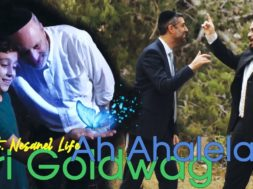 Ari Goldwag – Ah Ahalela – feat. Nesanel Life