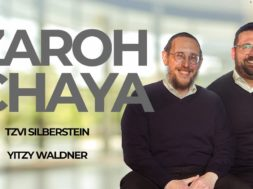 Zaroh Chaya- Tzvi Silberstein & Yitzy Waldner (Official Music Video)